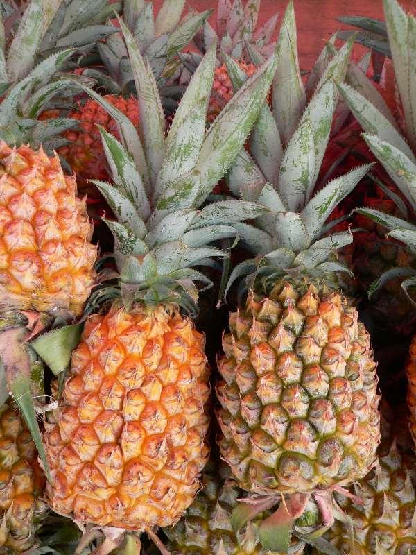 Schüler entdecken Ananas als Waschmittel