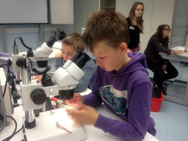 Grundschulprojekt der Overbergschule im Umweltlabor der GSF